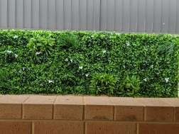 Artificial Wall gardens